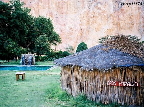 Colca Oasis