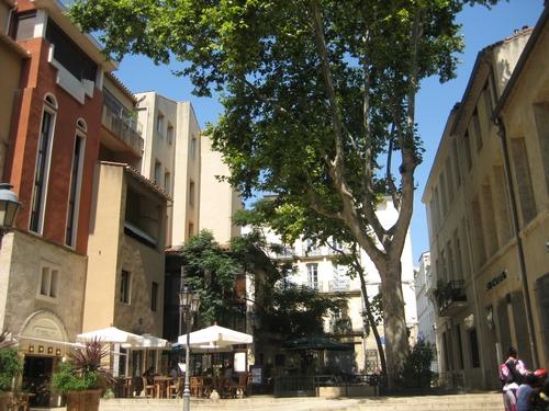 Terrasse Montpellier