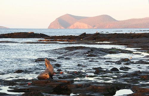 Islas Galapagos Ecuador