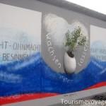 Fleurs dans mur de Berlin