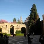Palais Alcazar Seville Espagne